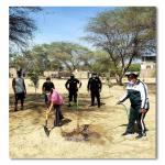 Parques ambientalmente saludables