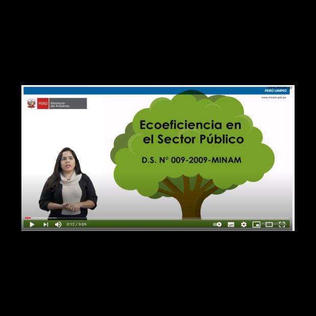 Ecoeficiencia en las instituciones públicas: Institucionalidad